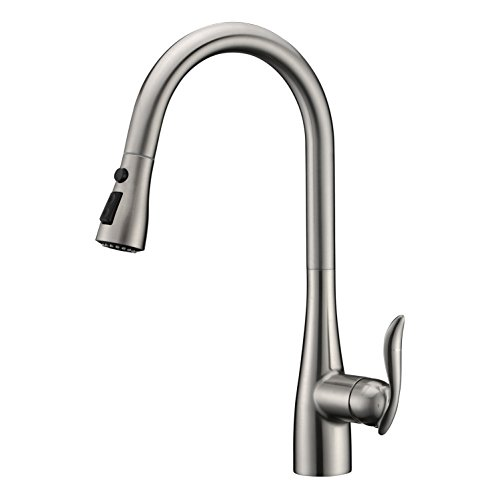 Gicasa Pull Out Kitchen Faucet